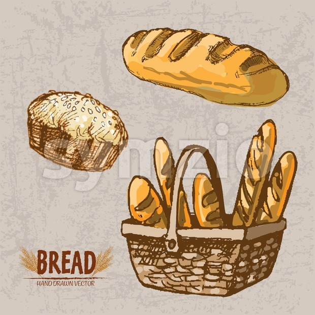 Digital color vector detailed line art golden loaf of bread and pie with sesame, baguettes in wooden basket hand drawn retro set. Vintage ink flat, Stock Vector