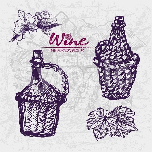 Digital color vector detailed line art wine old ancient braided pitchers, leaves hand drawn retro illustration set. Thin pencil outline. ...