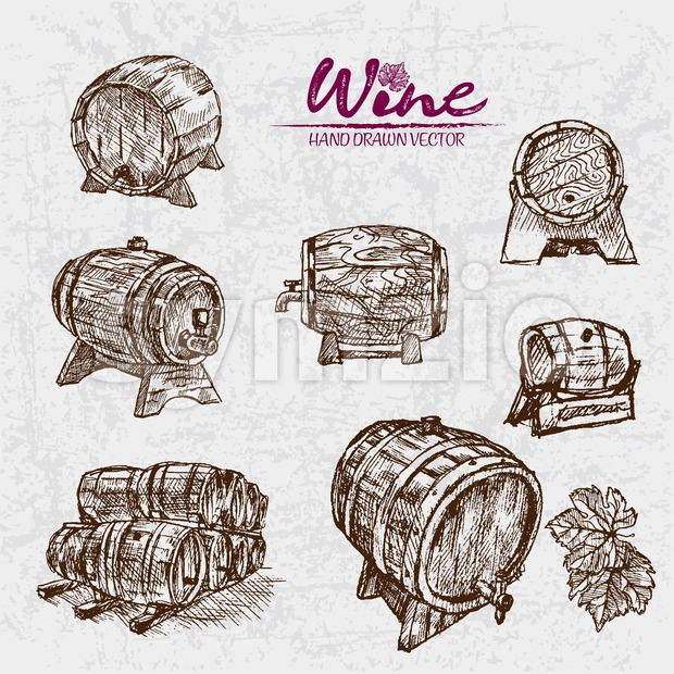 Digital color vector detailed line art wine barrels of different sizes and shapes hand drawn retro illustration set. Thin pencil ...
