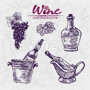 Digital color vector detailed line art wine bottles in ice buckets, pitcher and black grape bunch with leaves hand drawn illustration set outlined. Stock Vector