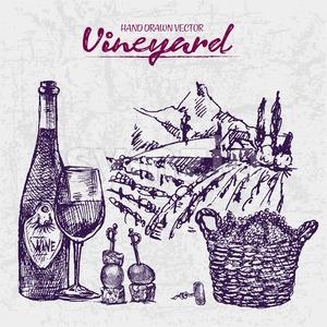 Digital color vector line art wine bottle, glass half full, cheese and olive appetizers, corkscrew, wooden basket hand drawn set. Vintage ink flat, Stock Vector