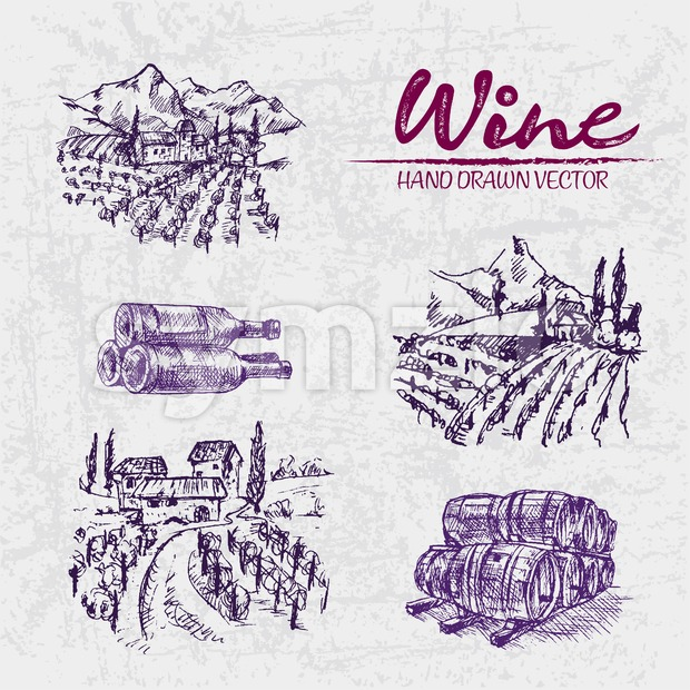 Digital color vector detailed line art purple vineyard fields, wine and barrels stacked hand drawn illustration set. Thin artistic pencil ...