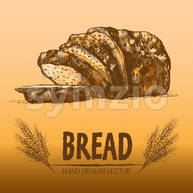 Digital color vector detailed line art golden loaf of rye bread, slices and wheat hand drawn illustration set. Thin artistic pencil outline. Vintage Stock Vector