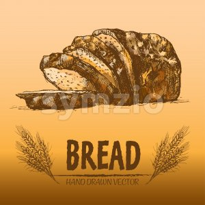 Digital color vector detailed line art golden loaf of rye bread, slices and wheat hand drawn illustration set. Thin artistic pencil outline. Vintage Stock Photo