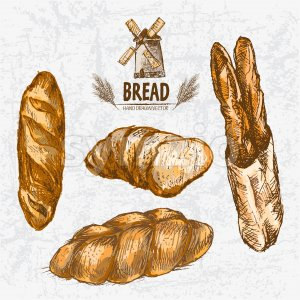 Digital color vector detailed line art golden loaves of white and braided bread, baguettes in organic bag, wheat hand drawn set. Thin outline. Vintage Stock Photo