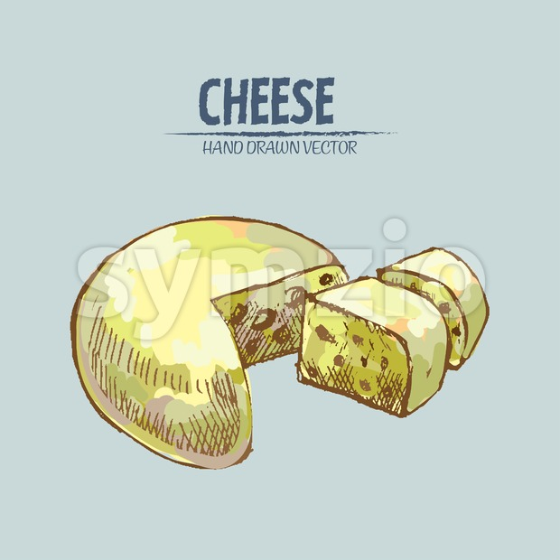 Digital vector detailed line art sliced cheese with slices hand drawn retro illustration collection set. Thin artistic pencil outline. Vintage ...