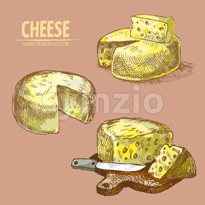 Digital vector detailed line art sliced cheese with holes hand drawn retro illustration collection set. Thin artistic pencil outline. Vintage ink Stock Vector