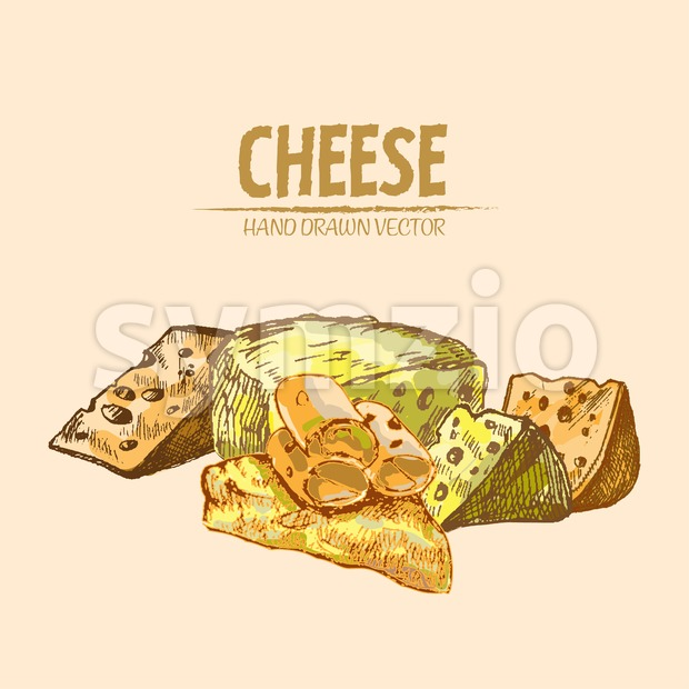 Digital vector detailed line art sliced cheese with holes hand drawn retro illustration collection set. Thin artistic pencil outline. Vintage ...