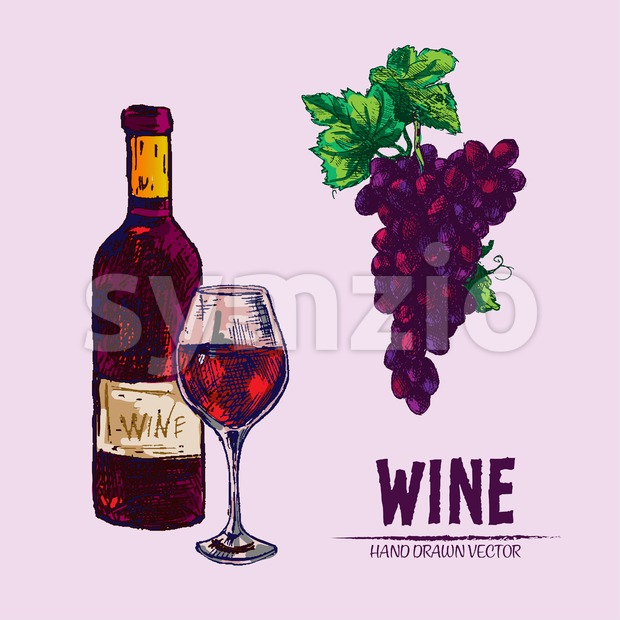 Digital vector detailed line art wine bottle and wineglass hand drawn retro illustration collection set. Thin artistic pencil outline. Vintage ...