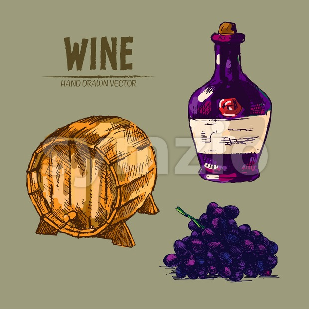Digital vector detailed line art wine barrel, pitcher and grapes hand drawn retro illustration collection set. Thin artistic pencil outline. Vintage Stock Vector