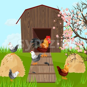 Chicken farm coop Vector. Spring season green background farming Stock Vector