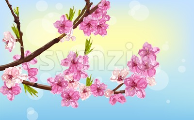 Cherry flowers Vector. Spring card background decor Stock Vector