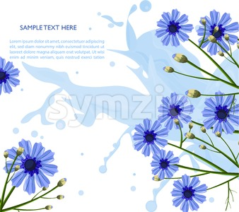 Chamomile blue flowers pattern Vector. Floral background decor Stock Vector