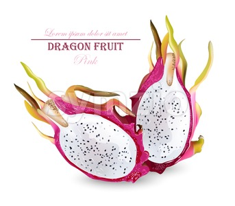 Dragon fruit isolated Vector realistic. Summer tropic pitaya healthy fruit Stock Vector