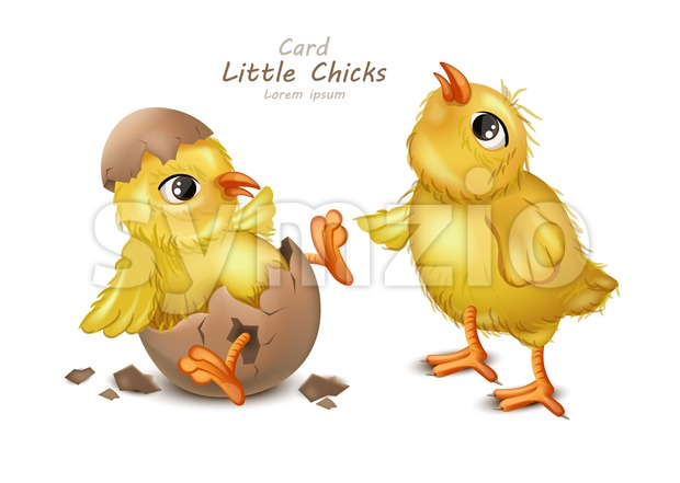 Easter card with cute Chicken Vector. cracked egg white background Stock Vector