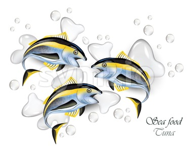 Fresh Tuna fish Vector realistic. Water splash background Stock Vector