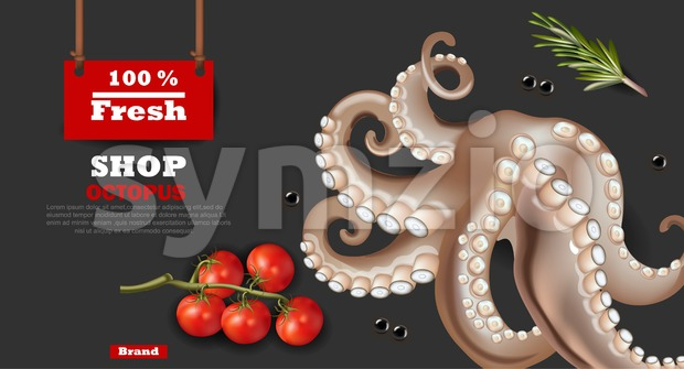 Fresh octopus banner Vector realistic. 3d detailed illustration Stock Vector