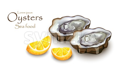 Oysters and lemon Vector realistic detailed 3d illustration Stock Vector