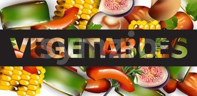 Healthy spring vegetables banner Vector realistic illustration Stock Vector