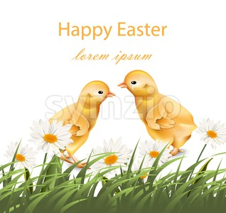 Happy Easter chickens card Vector. Chamomile field background illustration Stock Vector