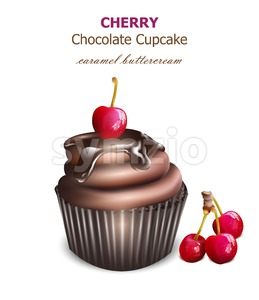 Chocolate cupcake with cherry fruit Vector. Retro vintage background Stock Vector