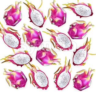 Dragon fruit pattern Vector. Delicious exotic tropical fruits detailed illustration Stock Vector