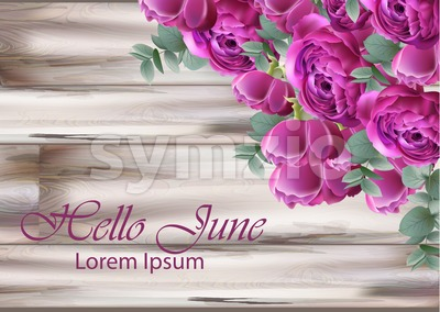 Hello june Peonies bouquet Vector. Vintage floral decor violet color Stock Vector