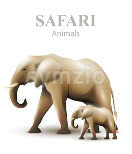 Elephants isolated Vector illustration. Animals wildlife template Stock Vector
