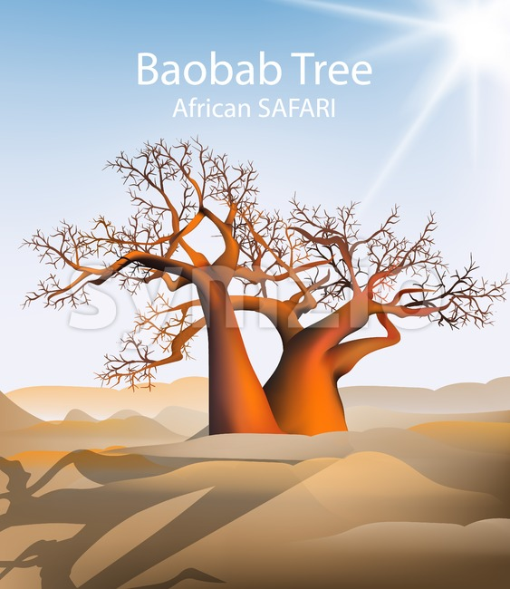 Baobab tree Vector safari background. Hot sunny day and sand dunes illustration