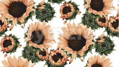 Vintage sunflowers seamless pattern background Vector. Beautiful spring summer card. 3d detailed texture illustration Stock Vector
