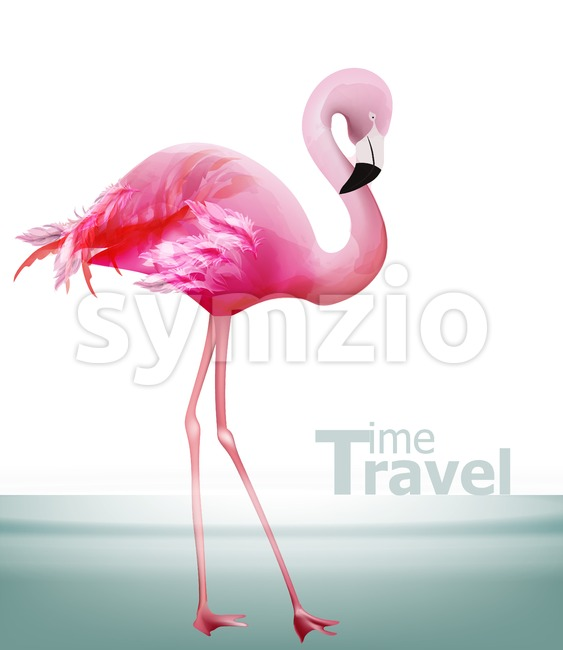 Flamingo card Vector. Beautiful pink bird on blue background Stock Vector