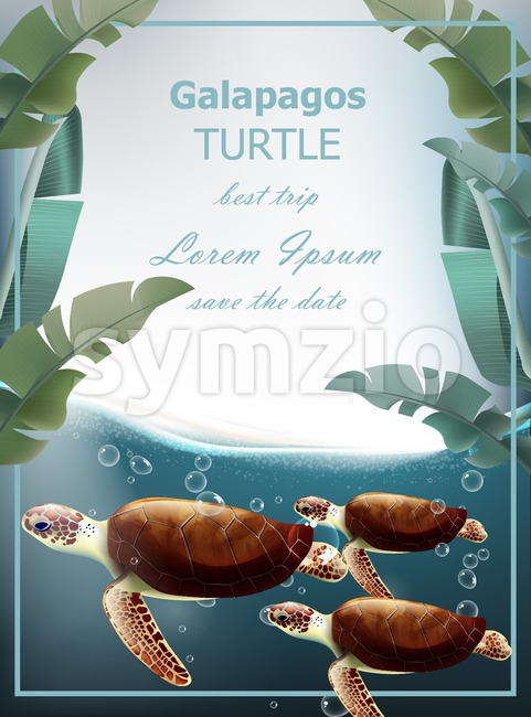 Galapagos turtles Vector. Summer sea card with cute turtles. under sea wild life Stock Vector