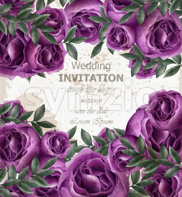 Wedding Invitation roses card Vector. Beautiful violet roses flowers decor. Elegant decor vintage background Stock Vector