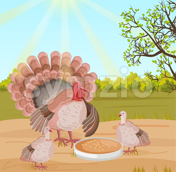 Turkey at the farm Vector. Nature background illustration Stock Vector