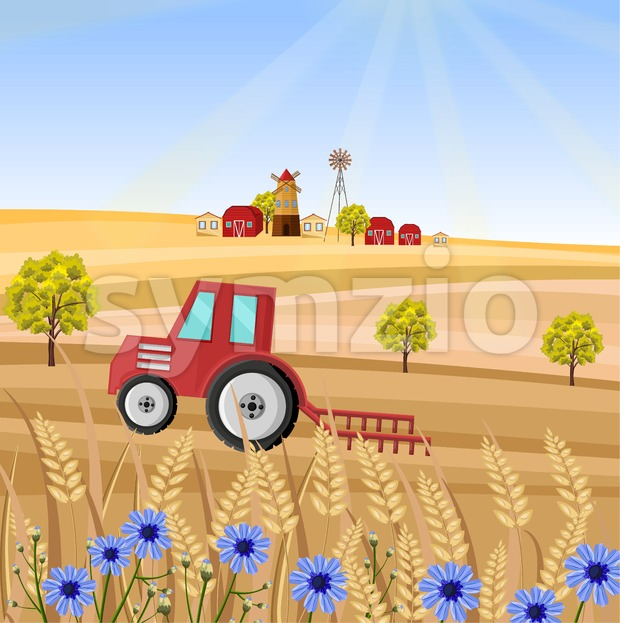 Tractor at the farm Vector illustration. Wheat field stalk. Provence harvest background Stock Vector