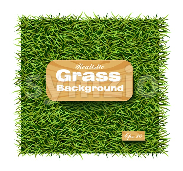 Grass background Vector realistic. Layout template illustration Stock Vector