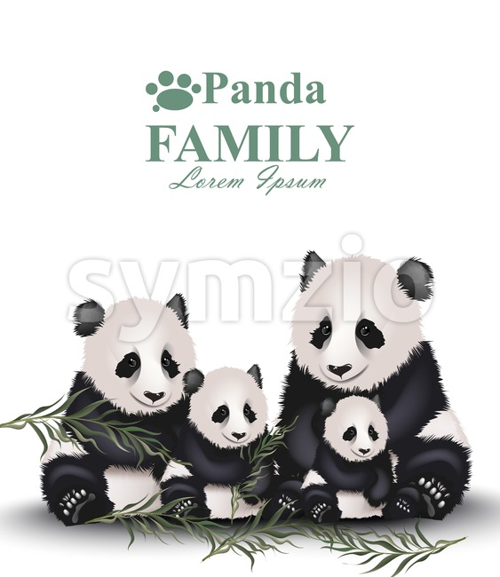 Panda family Vector. Cute animals detailed illustration