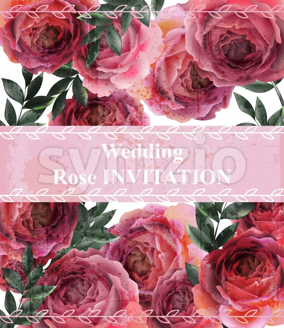 Wedding invitation Vintage roses background Vector. Floral card retro decor