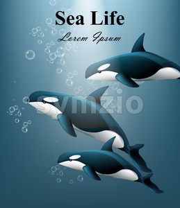 Whales under water Vector. Sea life beautiful background illustration Stock Vector