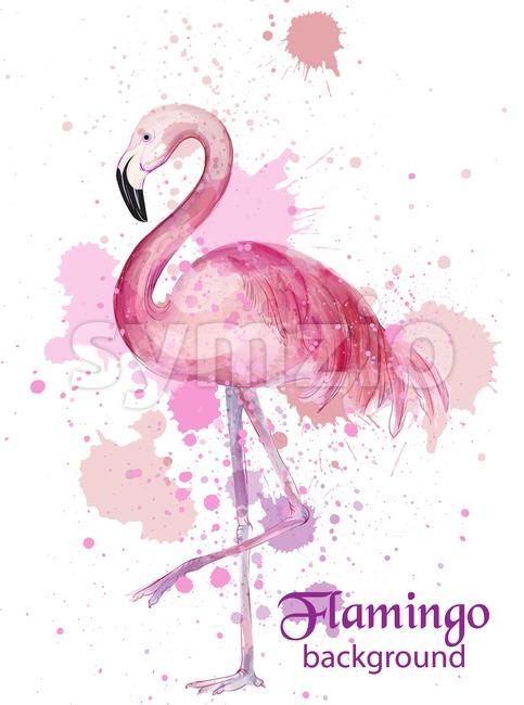 Vintage Flamingo watercolor card Vector. Hand made design decor Stock Vector