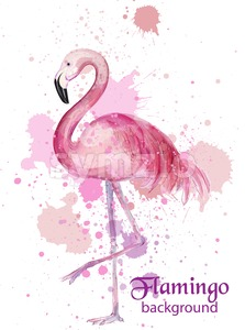 Vintage Flamingo watercolor card Vector. Hand made design decor Stock Vector