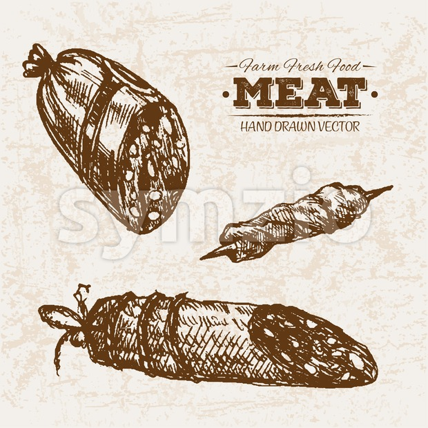 Hand drawn sketch salami meat products set, farm fresh food, black and white vintage illustration Stock Vector