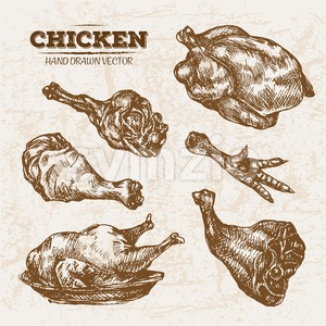 Hand drawn sketch chicken meat products set, farm fresh food, black and white vintage illustration Stock Vector