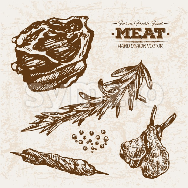 Hand drawn sketch meat products set with rosemary, farm fresh food, black and white vintage illustration Stock Vector