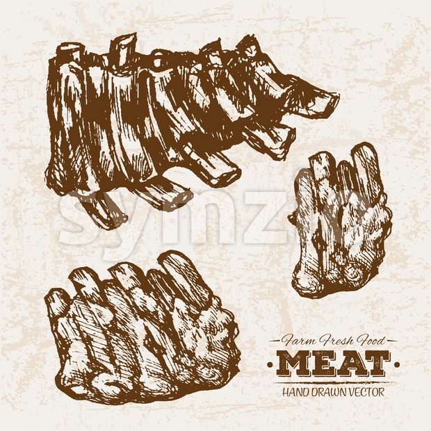 Hand drawn sketch meat grilled ribs products set, farm fresh food, black and white vintage illustration Stock Vector