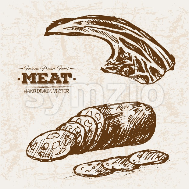 Hand drawn sketch steak and salami meat products set, farm fresh food, black and white vintage illustration Stock Vector