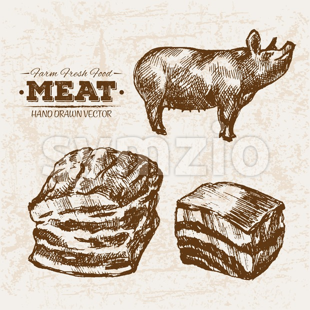 Hand drawn sketch pork and ham meat products set, farm fresh food, black and white vintage illustration Stock Vector