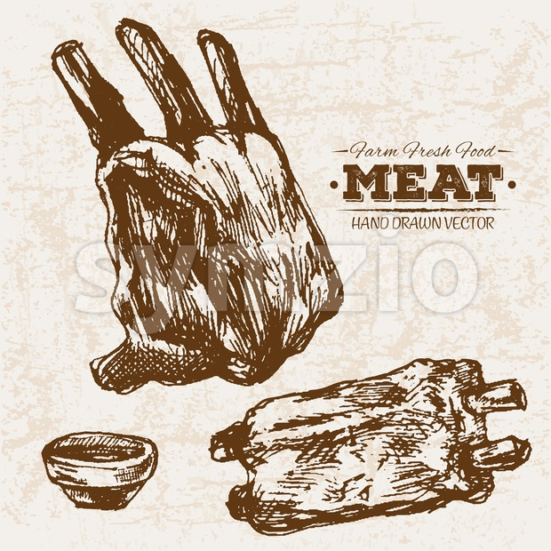 Hand drawn sketch ribs meat products set, farm fresh food, black and white vintage illustration