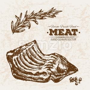 Hand drawn sketch ribs meat products set, farm fresh food, black and white vintage illustration Stock Vector