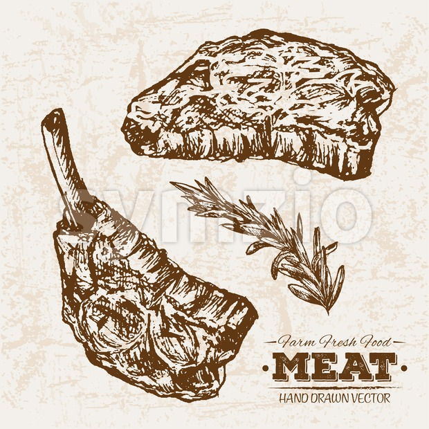 Hand drawn sketch steak and rosemary meat products set, farm fresh food, black and white vintage illustration Stock Vector